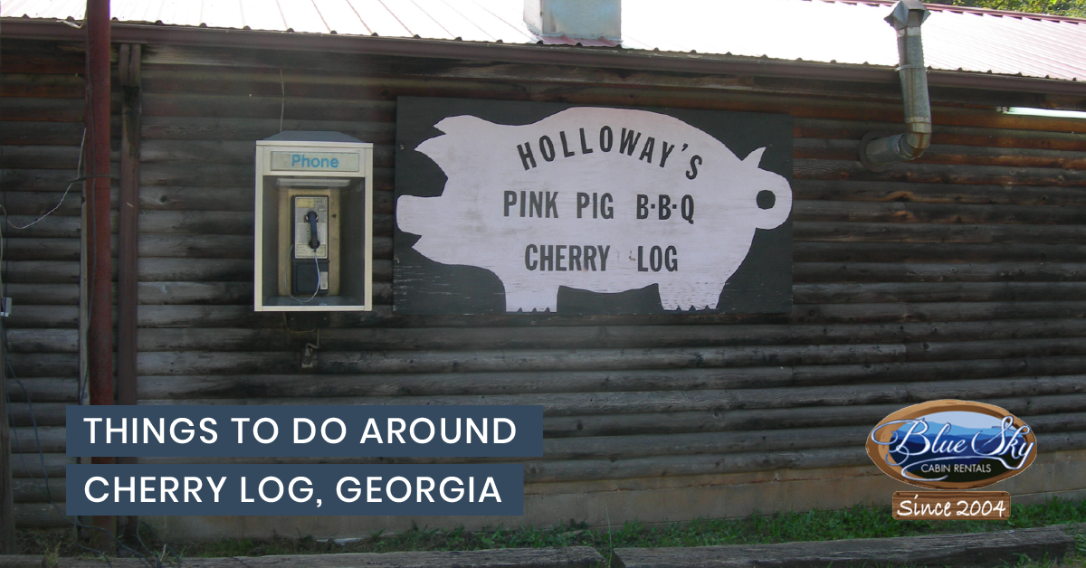 Things To Do Around Cherry Log Ga Blue Sky Cabin Rentals