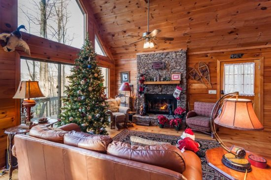 Ellijay cabin with 2 bedrooms and 2 baths and it's pet friendly!