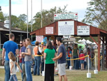 Georgia Apple Festival in Ellijay. One of the biggest festivals in the southeast!